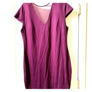 Purple Fitted Dress with Mesh Plunge Neckline